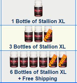 stallion penis size